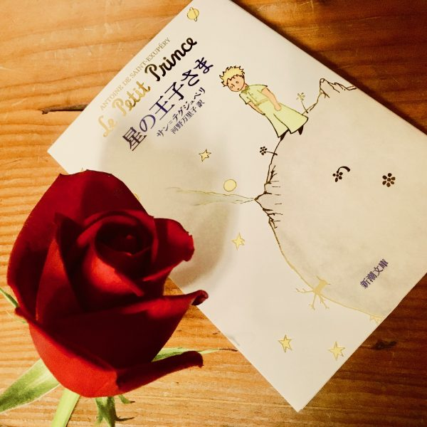 「きみのバラが、この世に一輪だけだってことがわかるから。」