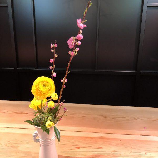 ラナンキュラス〜Ranunculus〜